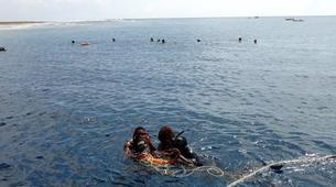 Snorkeling-Zanzibar-Island Escape snorkelling trip from Matemwe, Zanzibar-5