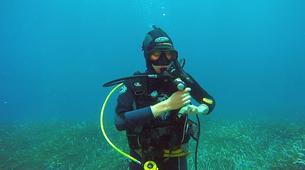 Plongée sous-marine-Malte-PADI Open Water Diver in Exiles Bay, Malta-5