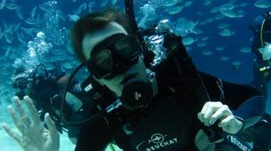 Plongée sous-marine-Malte-PADI Open Water Diver in Exiles Bay, Malta-1