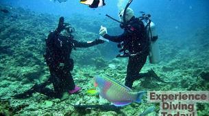 Plongée sous-marine-Malte-Discover Scuba Diving course in Sliema, Malta-6