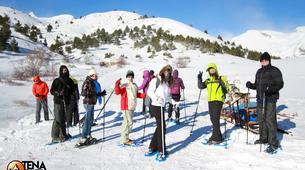 Raquette à Neige-Province Huesca-Randonnée Raquettes dans la Vallée de Tena, Huesca-2