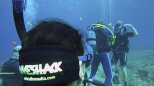 Plongée sous-marine-Malte-Discover Scuba Diving course in Sliema, Malta-3