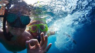 Snorkeling-Puerto del Carmen, Lanzarote-Excursions de plongée en apnée à Puerto del Carmen, Lanzarote-4