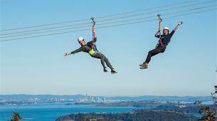 Tyrolienne-Auckland-Ziplining excursion on Waiheke Island near Auckland-11