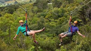 Tyrolienne-Auckland-Ziplining excursion on Waiheke Island near Auckland-14