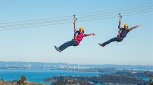 Tyrolienne-Auckland-Ziplining excursion on Waiheke Island near Auckland-10