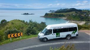 Tyrolienne-Auckland-Ziplining excursion on Waiheke Island near Auckland-2