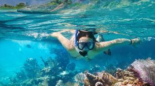 Snorkeling-Puerto del Carmen, Lanzarote-Excursions de plongée en apnée à Puerto del Carmen, Lanzarote-6