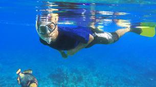 Snorkeling-Puerto del Carmen, Lanzarote-Excursions de plongée en apnée à Puerto del Carmen, Lanzarote-5