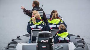 Jet Boat-Stockholm-RIB speedboat tour in Stockholm-3