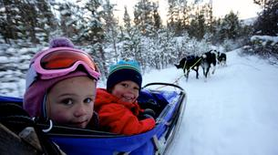 Dog sledding-Geilo-Dog sledding excursion in Geilo-6