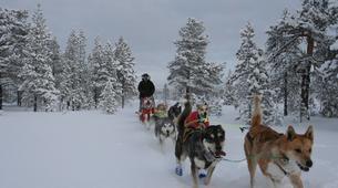 Dog sledding-Geilo-Dog sledding excursion in Geilo-4