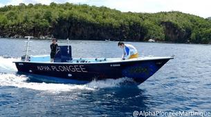 Plongée sous-marine-Les Anses-d'Arlet-Stage PADI Open Water à Les Anses-d'Arlet, Martinique-6