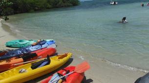 Kayak de mer-La Trinité-Location Kayak depuis Le Robert-4