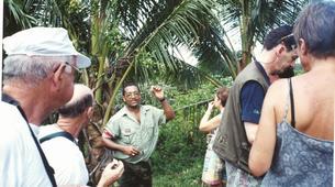 Randonnée / Trekking-Martinique-Randonnée guidées sur les sentiers de Martinique-2