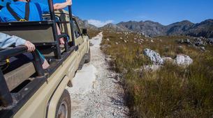 Zip-Lining-Cape Town-Zip-lining near Cape Town-4