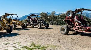 Quad biking-Fuengirola-Buggy Tour in Sierra de Mijas on the Costa del Sol-2