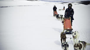 Dog sledding-Tromsø-Self-drive Arctic dog sledding excursion in Tromsø-2