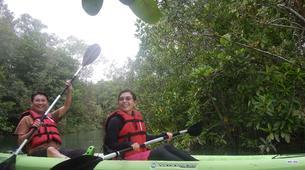 Kayaking-Singapore-Mangrove Kayaking in Pulau Ubin, Singapore-3