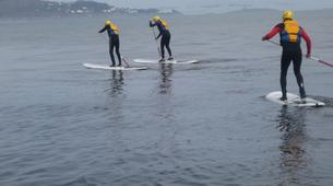 Paddle surf-County Wicklow-SUP in Bray Harbour-5