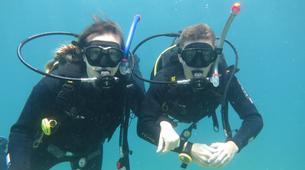 Scuba Diving-Bugibba-Discover Scuba Diving in Bugibba, Malta-4