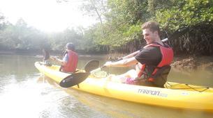Kayaking-Singapore-Mangrove Kayaking in Pulau Ubin, Singapore-4