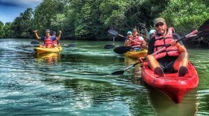 Kayaking-Singapore-Mangrove Kayaking in Pulau Ubin, Singapore-5
