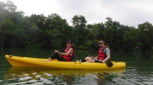 Kayaking-Singapore-Mangrove Kayaking in Pulau Ubin, Singapore-1