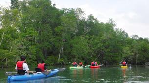 Kayaking-Singapore-Mangrove Kayaking in Pulau Ubin, Singapore-6