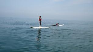 Paddle surf-County Wicklow-SUP in Bray Harbour-4