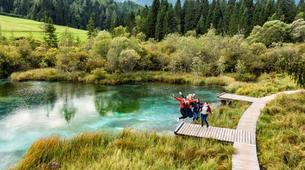 Wandern/Trecking-Bled-7 Alpenwunder Tour in Gorenjska, von Bled aus-1
