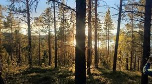 Randonnée / Trekking-Kiruna-Hiking trip in the Kebnekaise valley near Kiruna-5
