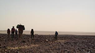 Survival Training-Marrakech-Stage de Survie au Maroc au départ de Marrakech-6