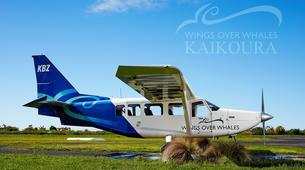 Scenic Flights-Kaikoura-Whale watching flight from Kaikoura-3
