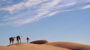 Survival Training-Marrakech-Stage de Survie au Maroc au départ de Marrakech-2