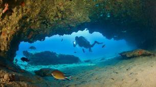 Plongée sous-marine-Castillo del Aguila, Lanzarote-Plongées d'aventure depuis Marina Rubicon, Playa Blanca-1
