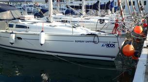Wildlife Experiences-Fuengirola-Dolphin Watching boat tour from Fuengirola-4
