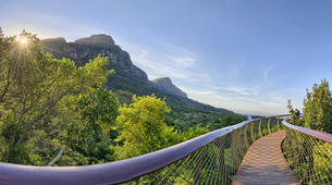 Randonnée / Trekking-Le Cap-Hike to Kirstenbosch Gardens in Cape Town-4
