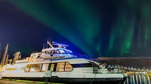 Wildlife Experiences-Tromsø-Whale Watching Safari & Fjord Cruise from Tromso-6