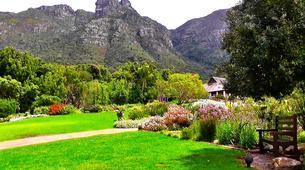 Randonnée / Trekking-Le Cap-Hike to Kirstenbosch Gardens in Cape Town-1