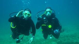 Scuba Diving-l'Estartit-Scuba diving excursion in l'Estartit, Costa Brava-3