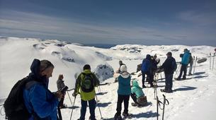 Snowshoeing-Jondal-Snowshoeing excursion in Folgefonna-3