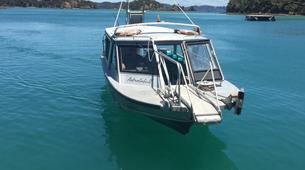 Scenic Flights-Paihia-Island Escape Tour with Helicopter Ride, Bay of Islands-5