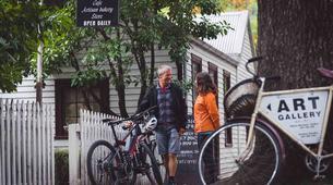Mountain bike-Queenstown-Supported mountain biking on the Queenstown Trails-1