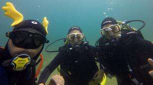 Scuba Diving-l'Estartit-Scuba diving excursion in l'Estartit, Costa Brava-5