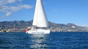 Wildlife Experiences-Fuengirola-Dolphin Watching boat tour from Fuengirola-2