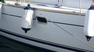 Wildlife Experiences-Fuengirola-Dolphin Watching boat tour from Fuengirola-10