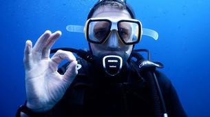 Scuba Diving-l'Estartit-Scuba diving excursion in l'Estartit, Costa Brava-4