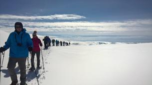 Snowshoeing-Jondal-Snowshoeing excursion in Folgefonna-4