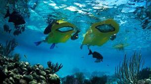 Snorkeling-Les Anses-d'Arlet-Excursion Seabob aux Anses-d'Arlet, Martinique-2